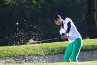 Golf Perceptions